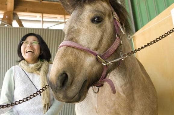 馬とのいい関係